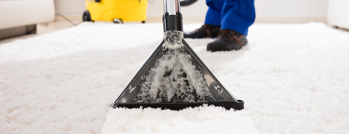 Carpet Cleaning | Gold Coast | Gold Coast Carpet Cleaning Services